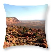 Arizona 19 Throw Pillow
