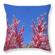 Arizona 3 Throw Pillow