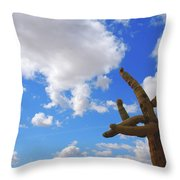 Arizona Blue Sky Throw Pillow