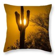 Arizona Cactus #1 Throw Pillow