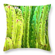 Arizona Cactus #16 Throw Pillow