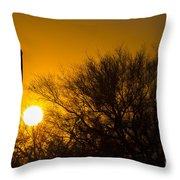 Arizona Cactus #2 Throw Pillow