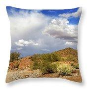 Arizona Clouds Throw Pillow