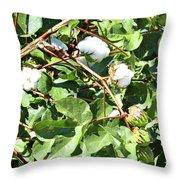 Arizona Cotton Throw Pillow