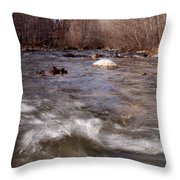 Arizona Creek Throw Pillow