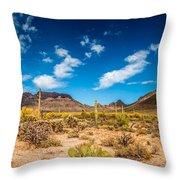 Arizona Desert #2 Throw Pillow