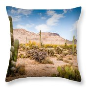 Arizona Desert #3 Throw Pillow