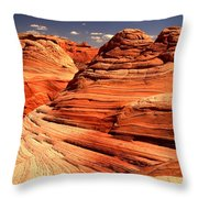 Arizona Desert Landscape Throw Pillow