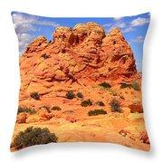 Arizona Elegance Throw Pillow