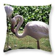 Arizona Flamingos Throw Pillow