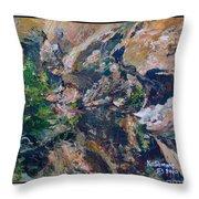 Arizona River Mountains Throw Pillow