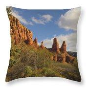 Arizona Outback 2 Throw Pillow by Mike McGlothlen