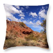 Arizona Red Rock Throw Pillow