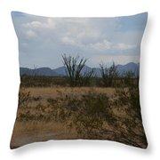 Arizona Rest Stop Throw Pillow