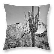 Arizona Saguaro Throw Pillow