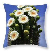 Arizona State Flower- The Saguaro Cactus Flower Throw Pillow