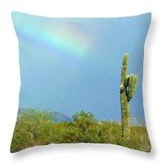 Arizona Sunday Afternoon Throw Pillow