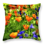 Arizona Wildflowers Throw Pillow