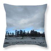 Arizona Winter Landscape Throw Pillow