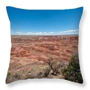 Arizona's Painted Desert Throw Pillow