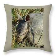 Armadillo By Morning Throw Pillow