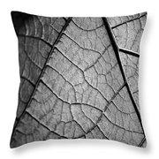 Aroid House Leaf Throw Pillow