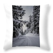 Around The Bend Throw Pillow