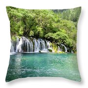 Arrow Bamboo Waterfall Throw Pillow