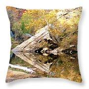 Arrow Rock Throw Pillow