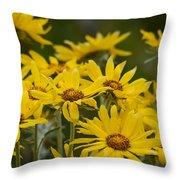 Arrowleaf Balsamroot Bouquet Throw Pillow