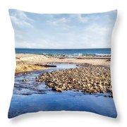 Arroyo Sequit Creek - Steelhead Trout Throw Pillow