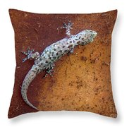 Art Among The Ruins - Too Throw Pillow