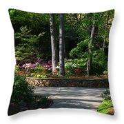 Art Center Garden 1 Throw Pillow