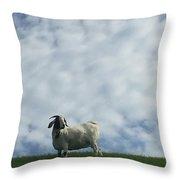 Art Goat Throw Pillow