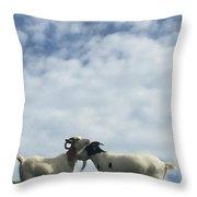 Art Goats II Throw Pillow