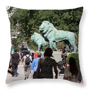 Art Institute Of Chicago Bronze Lions Throw Pillow