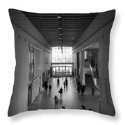 Art Institute Of Chicago Modern Wing Throw Pillow