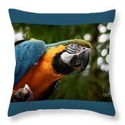 Art Macaw Throw Pillow