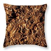 Art Of A Dinosaur Dig Throw Pillow
