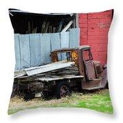 Art Of Aging 8 Throw Pillow
