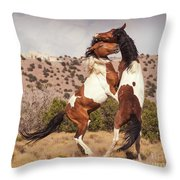 Art Of The Fight Throw Pillow