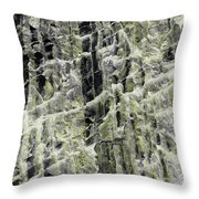 Art Print Canyon 19 Throw Pillow