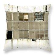 Art Print Windows 10 Throw Pillow by Harry Gruenert