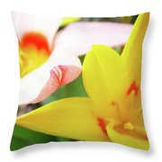 Art Prints Pink Tulip Yellow Tulips Giclee Prints Baslee Troutman Throw Pillow