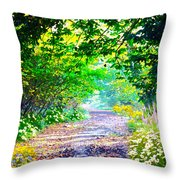 Art Rendered Country Pathway Throw Pillow