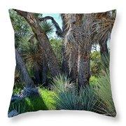 Arthur B Ripley Desert Woodland State Park Throw Pillow
