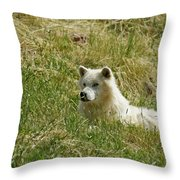 Artic Wolf 2 Dry Brushed Throw Pillow