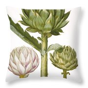 Artichoke, 1613 Throw Pillow