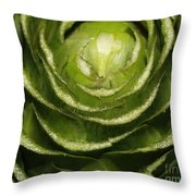 Artichoke Close-up Throw Pillow