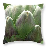 Artichoke In Spain Throw Pillow